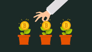 Plan épargne Bitcoin